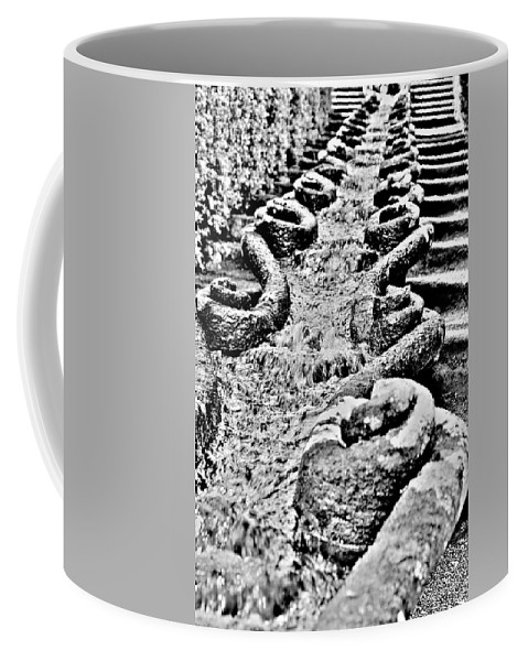 Flow Coffee Mug featuring the photograph Flowing by Valentino Visentini