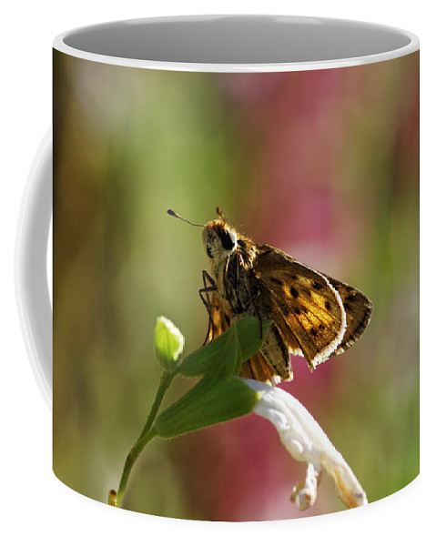 Moth Coffee Mug featuring the photograph Flutter by Donna Blackhall