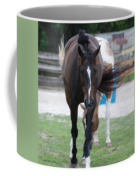 Horses Coffee Mug featuring the photograph Flying Circus by Rob Hans