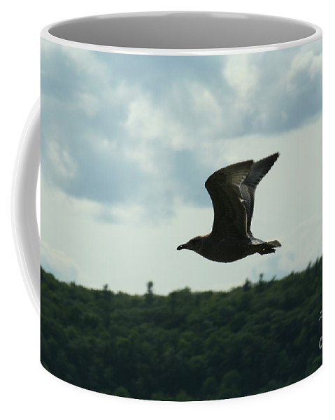Ephraim Coffee Mug featuring the photograph Flying Ephraim Wi by Tommy Anderson