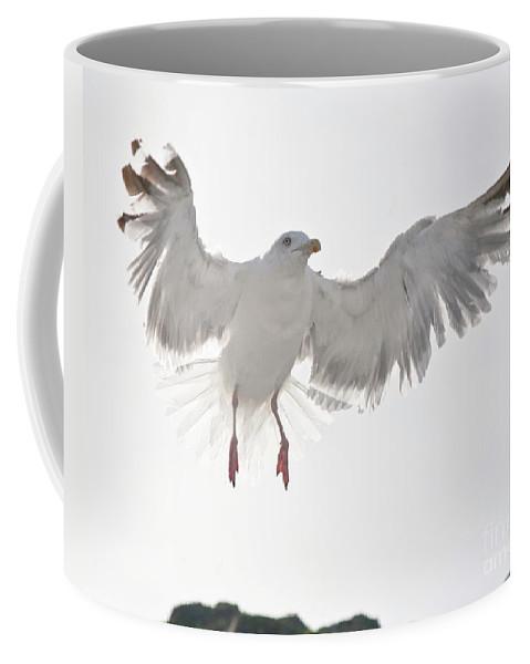 Europe Coffee Mug featuring the photograph Flying European Herring Gull by Heiko Koehrer-Wagner