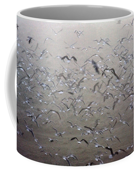 Flight Coffee Mug featuring the photograph Flying Gulls by Bob Kemp