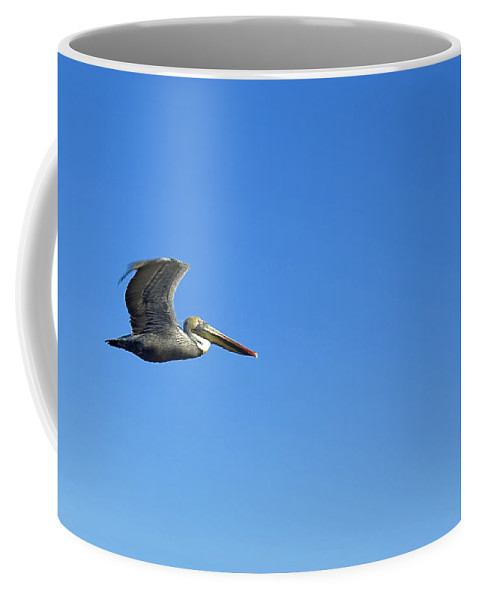 Brown Pelican Coffee Mug featuring the photograph Flying High by Robert Brown