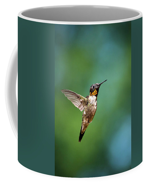 Hummingbird Coffee Mug featuring the photograph Flying Hummingbird by Christina Rollo