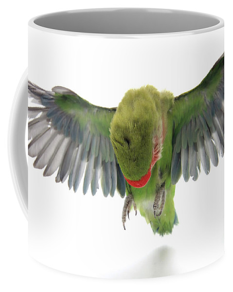 Fly Coffee Mug featuring the photograph Flying Parrot by Yedidya yos mizrachi
