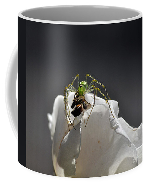 Clay Coffee Mug featuring the photograph Flys At The Picnic by Clayton Bruster