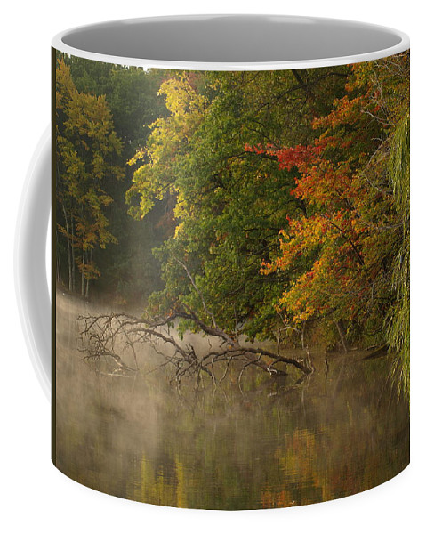 Fall Coffee Mug featuring the photograph Fog Rolls Into Fall by Thomas Young