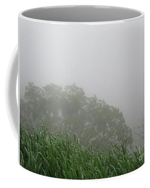 Fog Coffee Mug featuring the photograph Foggy Day by Suzanne Leonard