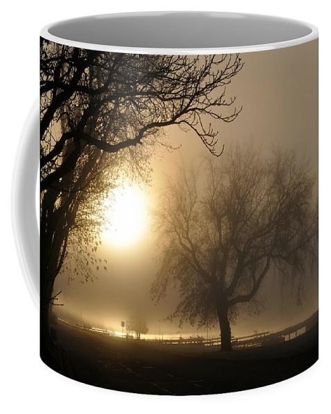 Foggy Coffee Mug featuring the photograph Foggy November Sunrise On The Bay by Tim Nyberg