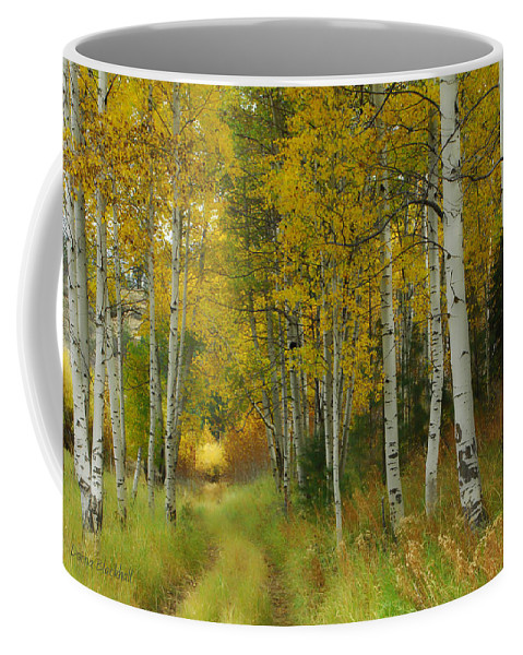Birch Trees Coffee Mug featuring the photograph Follow The Light by Donna Blackhall