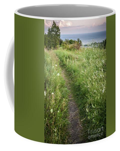Footpath Coffee Mug featuring the photograph Footpath Along Cliffs by Elena Elisseeva