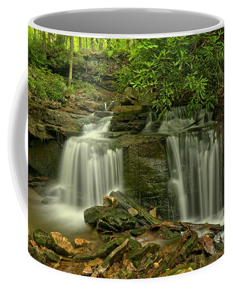 Cole Run Falls Coffee Mug featuring the photograph Forbes State Forest Twin Falls by Adam Jewell