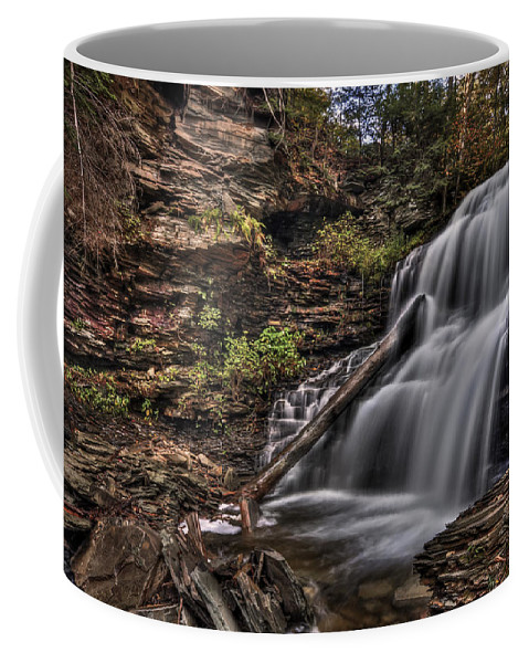Fall Coffee Mug featuring the photograph Forces Of Nature by Evelina Kremsdorf