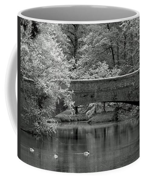 Ann Keisling Coffee Mug featuring the photograph Forest Bridge by Ann Keisling