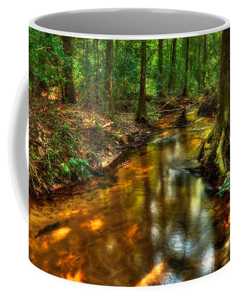 Creek Coffee Mug featuring the photograph Forest Creek by Rich Leighton