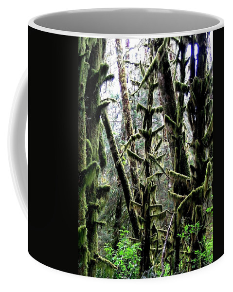 Ecola State Park Coffee Mug featuring the photograph Forest Finery by Will Borden