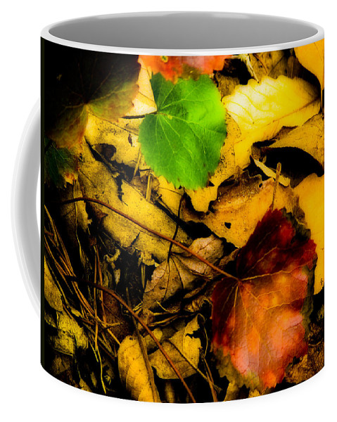 Nature Coffee Mug featuring the photograph Forest Floor by Ches Black