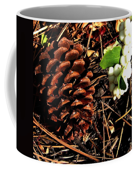 Forest Floor Coffee Mug featuring the photograph Forest Floor by Will Borden