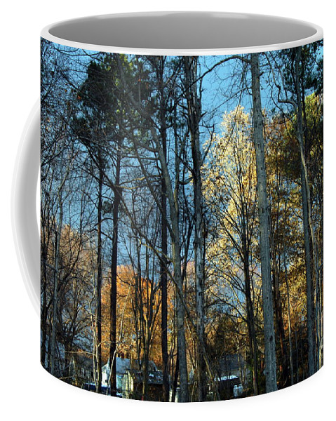 Clay Coffee Mug featuring the photograph Forest For The Trees by Clayton Bruster