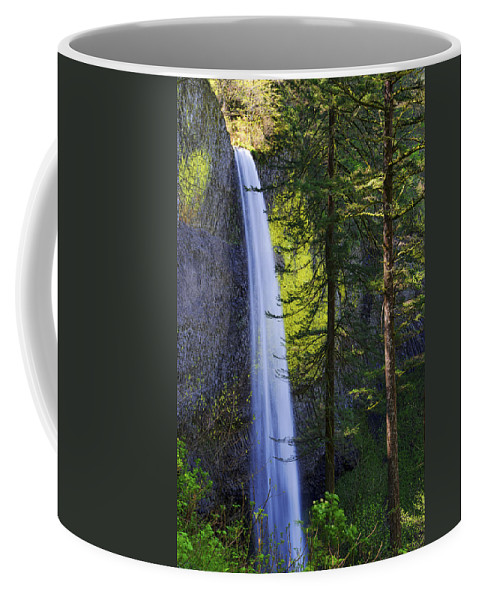 Forest Mist Coffee Mug featuring the photograph Forest Mist by Chad Dutson