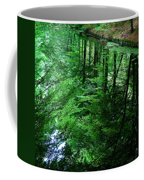 Forest Coffee Mug featuring the photograph Forest Reflection by Dave Bowman