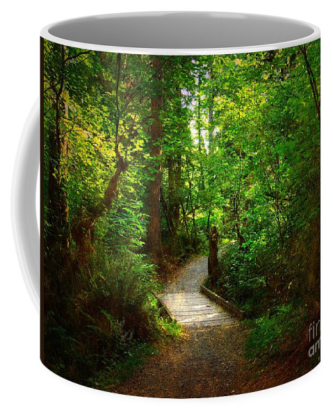 Trail Coffee Mug featuring the photograph Forest Trail by Sharon Talson