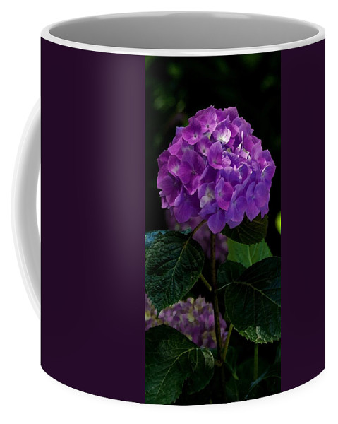 Floral Coffee Mug featuring the mixed media Forever Violet by Georgiana Romanovna