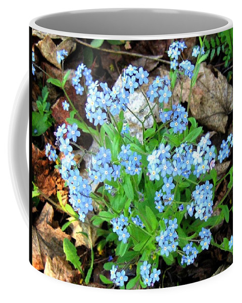 Forget-me-not Coffee Mug featuring the photograph Forget-me-not by Will Borden