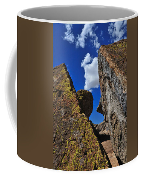 Forget Your Perfect Offering Coffee Mug featuring the photograph Forget Your Perfect Offering by Skip Hunt
