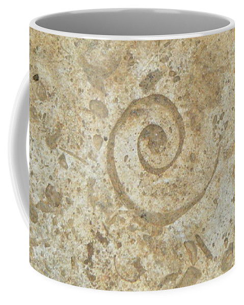Fossil Coffee Mug featuring the photograph Fossils In The Cave by Chris Christensen