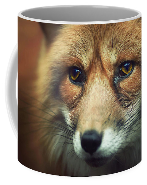 Animal Coffee Mug featuring the photograph Fox by Zoltan Toth