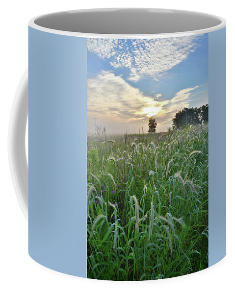 Black Eyed Susan Coffee Mug featuring the photograph Foxtail Grasses In Glacial Park by Ray Mathis