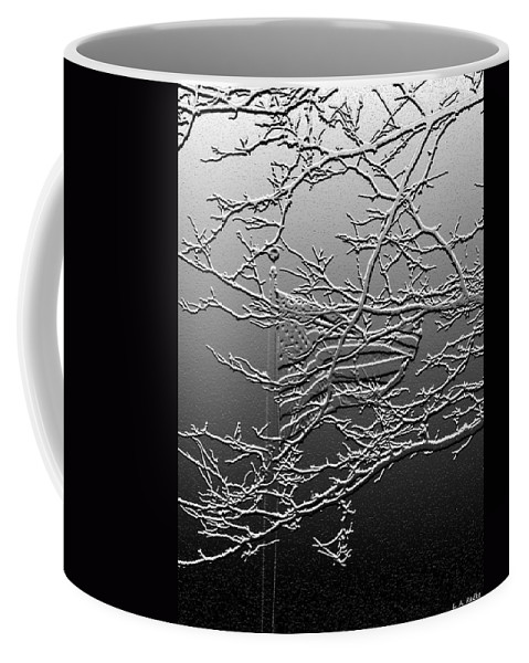 Lauren Radke Coffee Mug featuring the photograph Fractured America by Lauren Radke