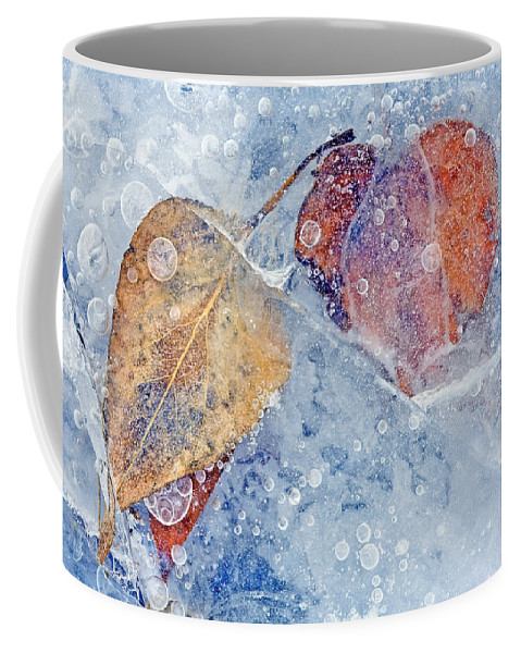 Ice Coffee Mug featuring the photograph Fractured Seasons by Mike Dawson