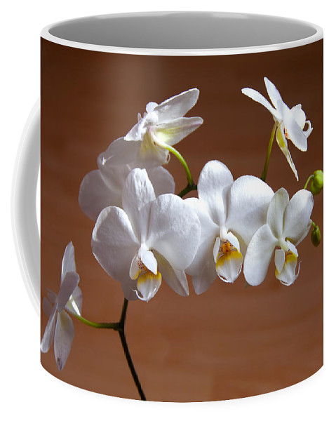 Anniversary Coffee Mug featuring the photograph Fragile Orchid by Svetlana Sewell