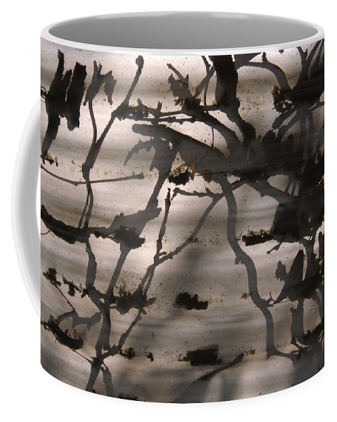 Nobody Coffee Mug featuring the photograph France, Paris, Tree Branches Reflected by Keenpress