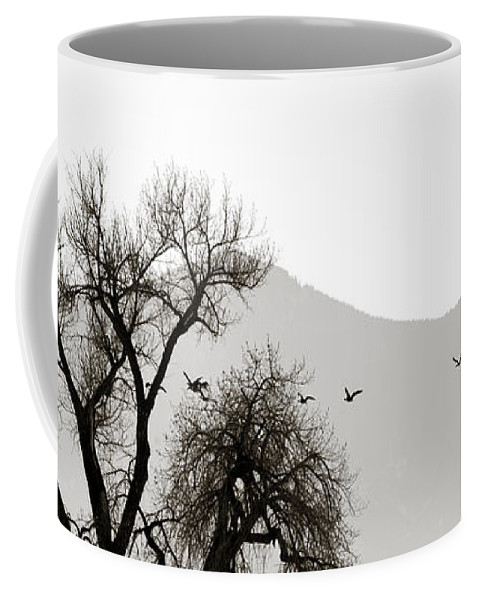Horizon Coffee Mug featuring the photograph Free Flying by Marilyn Hunt