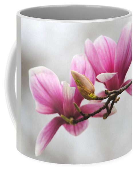 Magnolia Coffee Mug featuring the photograph Fresh Start by Jai Johnson