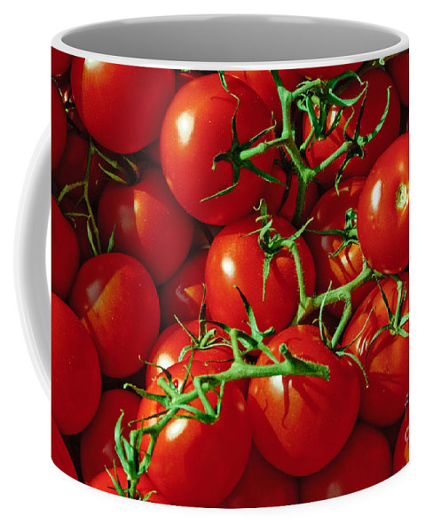 Tomato Coffee Mug featuring the photograph Fresh Tomotos On The Vine by Thomas Marchessault