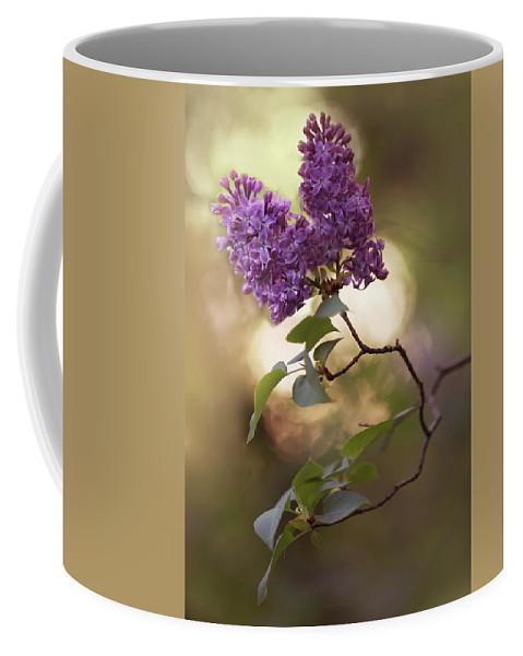 Flower Coffee Mug featuring the photograph Fresh Violet Lilac Flowers by Jaroslaw Blaminsky