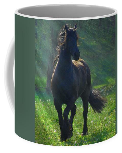 Horses Coffee Mug featuring the photograph Friesian Sun by Fran J Scott