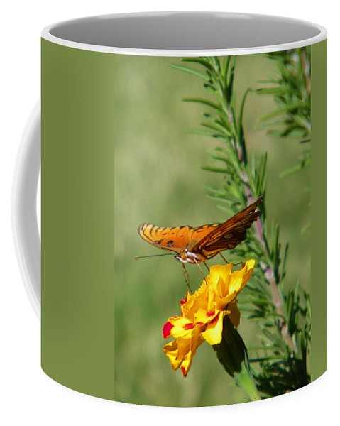 Fritillary Coffee Mug featuring the photograph Fritillary Flitterby by Gale Cochran-Smith