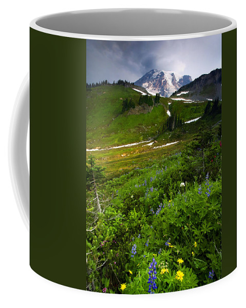 Rainier Coffee Mug featuring the photograph From The Top by Mike Dawson