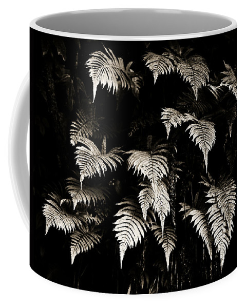 Hawaii Coffee Mug featuring the photograph Fronds by Marilyn Hunt