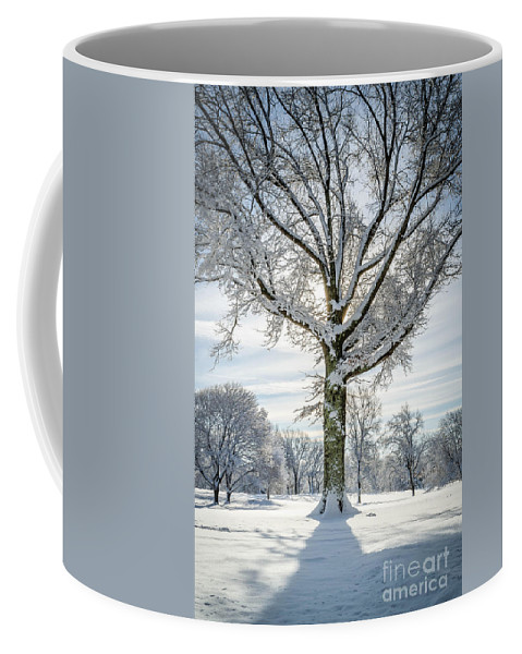 Mike Ste. Marie Coffee Mug featuring the photograph Front And Center by Mike Ste Marie