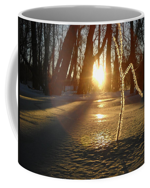 Sunrise Coffee Mug featuring the photograph Frost On Sapling At Sunrise by Kent Lorentzen