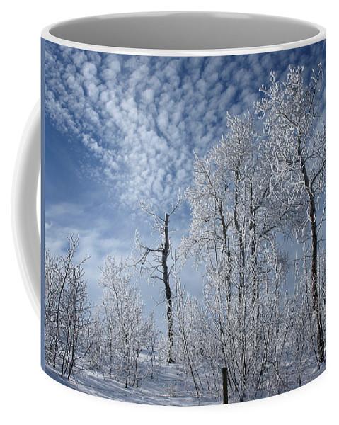 Landscape Coffee Mug featuring the photograph Frosted Hilltop Quakies by DeeLon Merritt