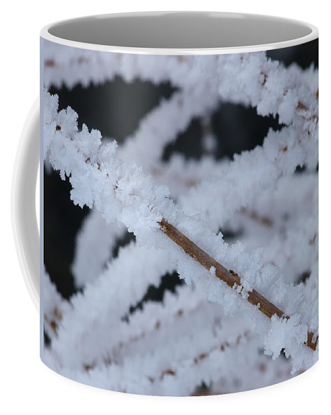 Frost Coffee Mug featuring the photograph Frosted Twigs by DeeLon Merritt