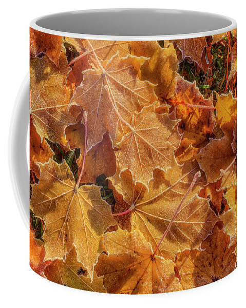 Atmosphere Coffee Mug featuring the photograph Frosted by Veikko Suikkanen