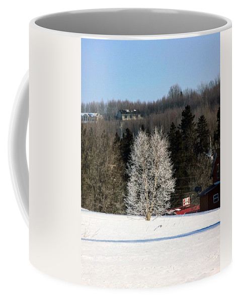 Birch Coffee Mug featuring the photograph Frosty Birch by William Tasker